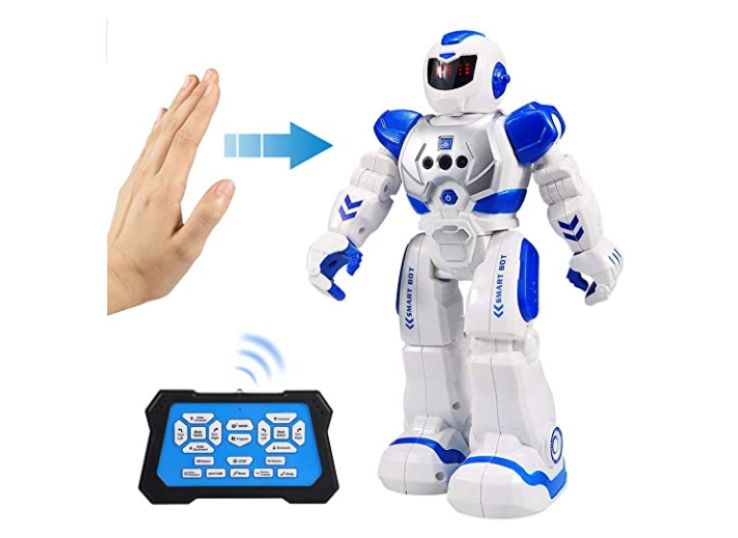 Flyglobal Smart Remote Control Robot